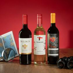 coffret vin du monde